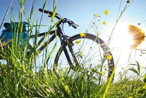 Gut versichert in den Frühling: Die richtige Hausratversicherung für Radler